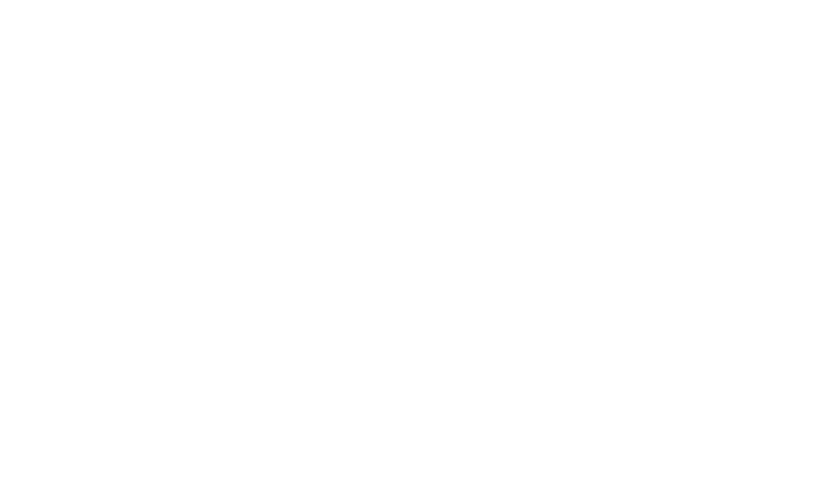 Priddey Marketing Logo White